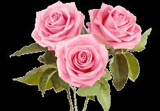 Мыло увлажняющее с экстрактом миндаля и розы Himalaya
