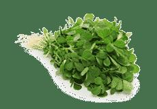 Крем для ног (FoodCareCream) Himalaya 50 гр