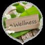 Общие сведения о способах использования лекарственных растений